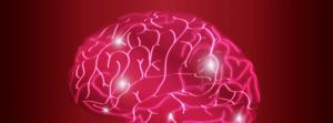 jornada empresas richard bandler cerebro