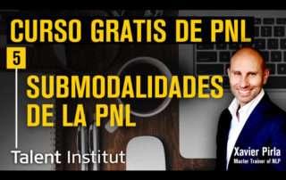 submodalidades pnl
